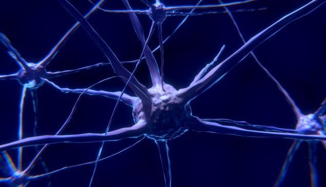 Is it in our power at all to make changes to our own brain?