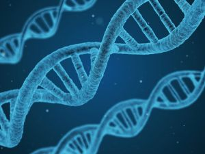 Over millennia, nature has evolved an incredible information storage medium – DNA.