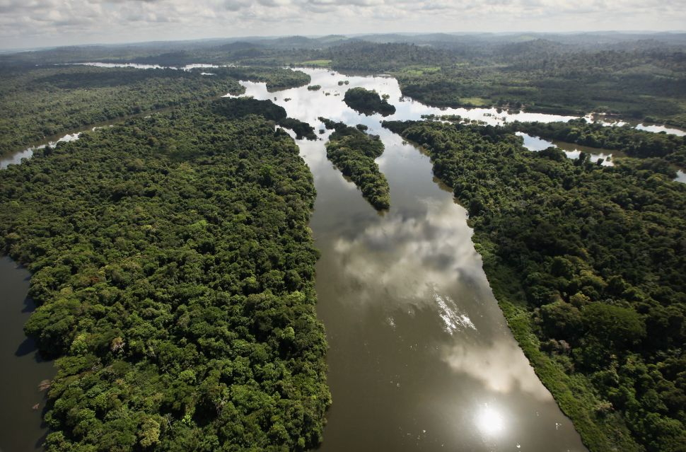 Brazilian President's Latest Attack on Environment Opens Amazon Reserve to Mining