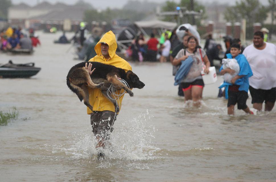 Walkie-Talkie App Zello Proves Critical in Harvey Rescue Efforts