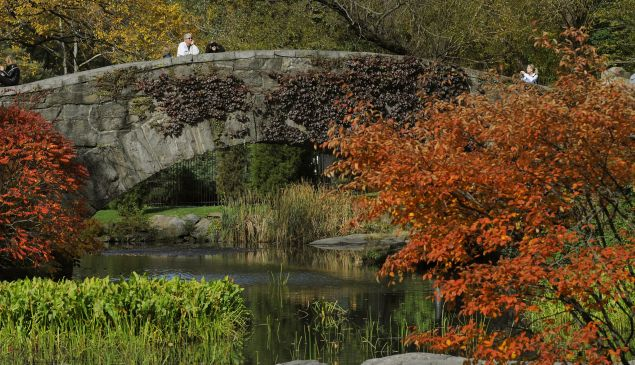 The Gapstow Bridge is seen through the trees in Central Park.