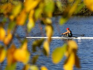 CAMBRIDGE, MA - OCTOBER 21: A rower in the Grand Master Singles is framed through foliage on a tree along the banks of the Charles River in Cambridge, MA during the 53rd Head of the Charles Regatta on Oct. 21, 2017. (Photo by )