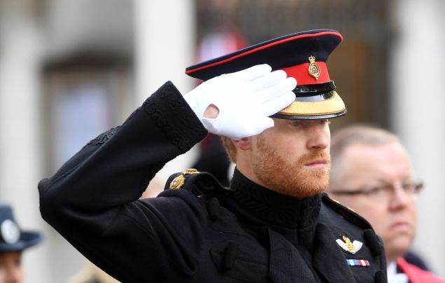 prince harry beard photos