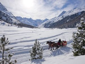 Carlton Hotel St. Moritz's horse-drawn sleigh adventure.