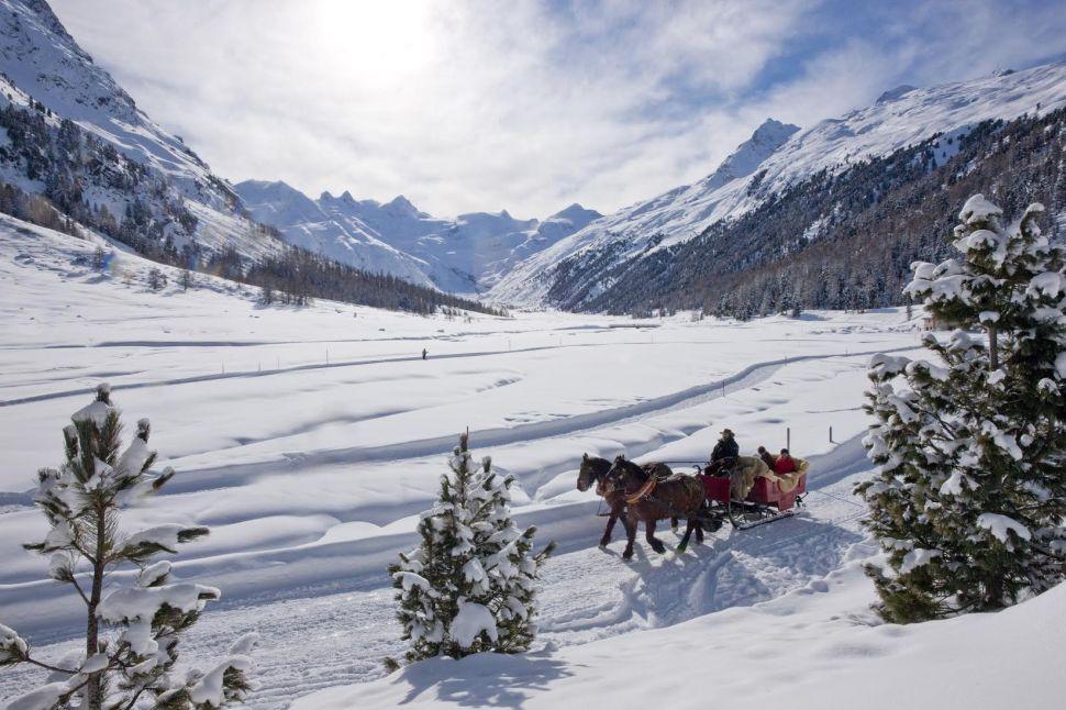 Dash Through the Snow in Style on These Luxury Sleigh Rides