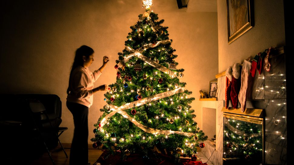 There's a Christmas Tree Shortage—And Also a 'National Christmas Tree Association'