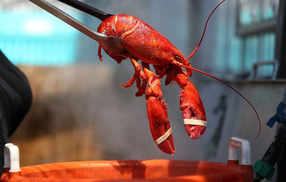 The gift bag also includes $100 gift cards for fresh Maine lobster from Beal's Lobster Pier.