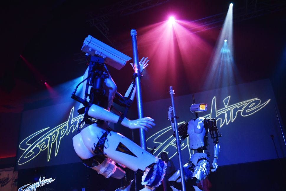 CES Robot Strippers Show Need for 'Sextech' Education