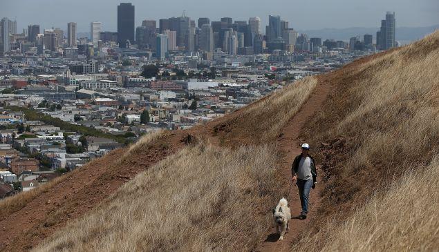 A woman walks her dog in San Francisco, California.