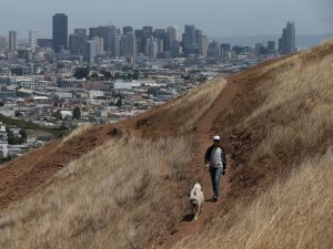 A woman walks her dog in San Francisco, California.