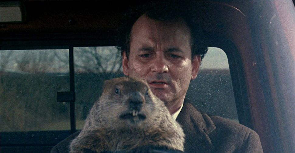 'Groundhog Day' Is Still a Big Money Maker 25 Years Later