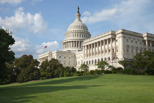 Some New York congressional lawmakers are facing off against first-time candidates in this year's congressional races.