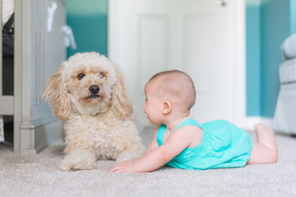 I Got Dumped by My Dog Walker: How the World Screws New Moms