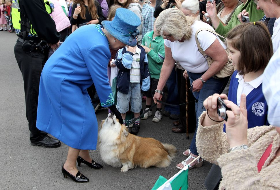 For the First Time Since WWII, the Royal Household Doesn't Have a Corgi