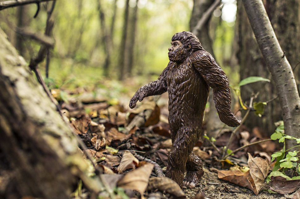Here's Why Political Pundits Are Now Talking About Bigfoot Erotica