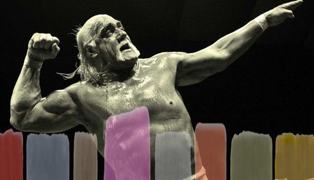 Hulk Hogan Gawker Auction