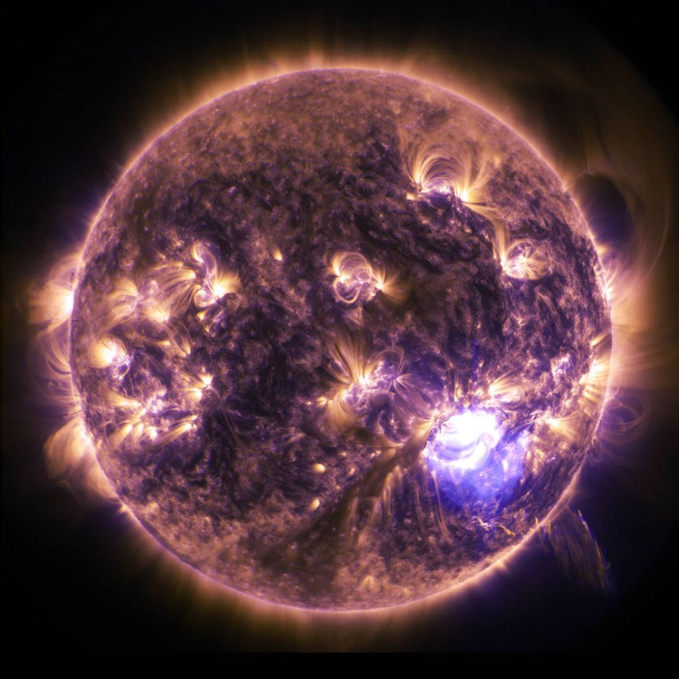 Why NASA's Mission to 'Touch the Sun' Could Be Critical for the Future of Humanity
