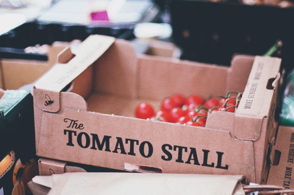 Historic Study of US-Mexico Tomato Trade Sheds Light on NAFTA 2.0 Talk