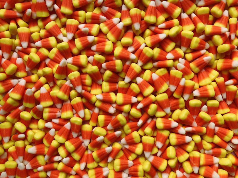 The Dark and Painful Process of Buying Candy Corn When It's NOT Halloween Season