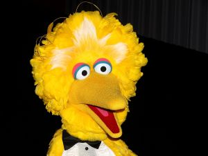 Big Bird attends an 'I Am Big Bird' screening in New York City.