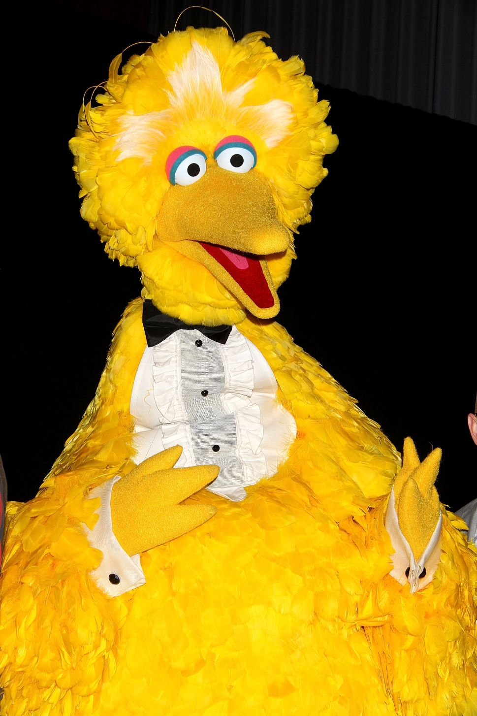 The Actor Behind Big Bird Is Leaving 'Sesame Street,' and His Painting Is Making Us Sad