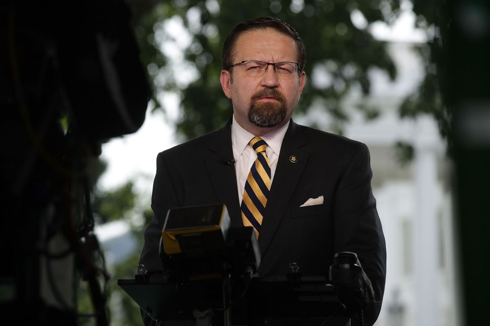 Sebastian Gorka Busted for Following Softcore Porn on Instagram