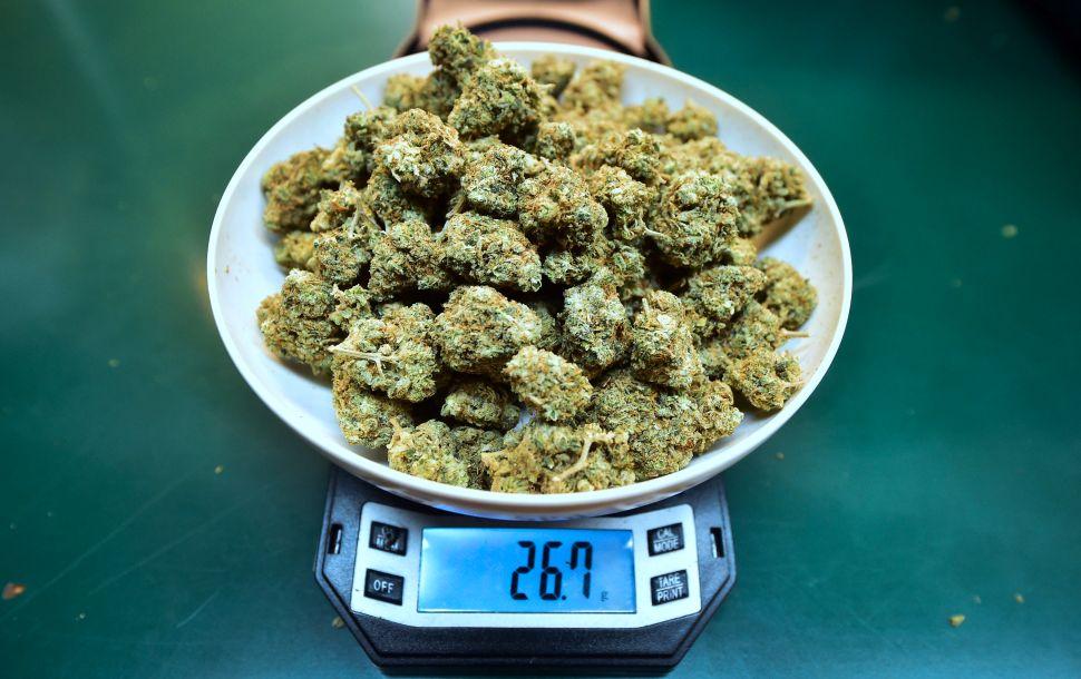 NJ Politics Digest: New Jersey Ready to Move on Legalizing Marijuana