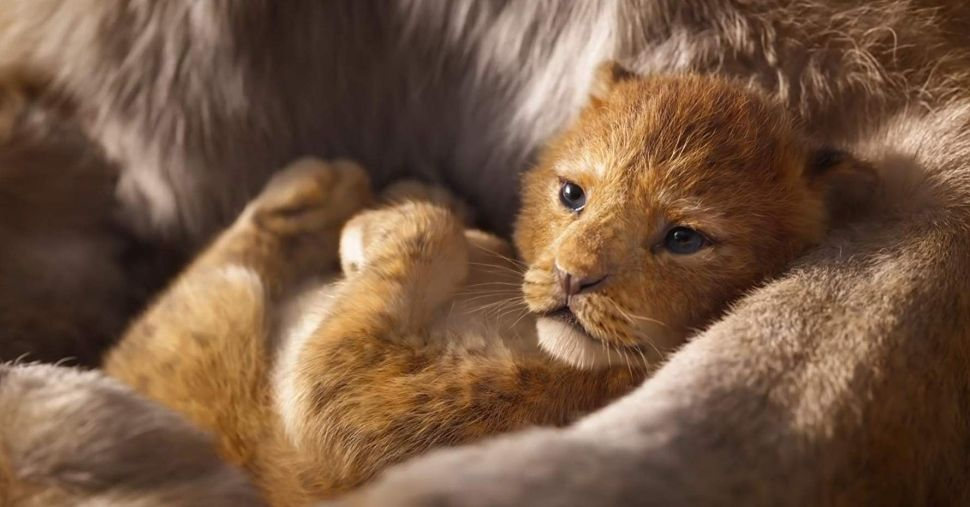 From Lucasfilm to 'The Lion King,' What the Future Holds for Disney's Roaring Empire
