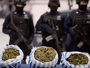 Cops love marijuana but are absolutely apoplectic, despondent and bereft to know that it is becoming legal. Here's why.