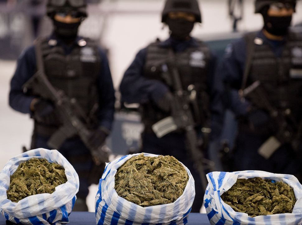 This Is Why Police Love Marijuana (and Hate Legalization)