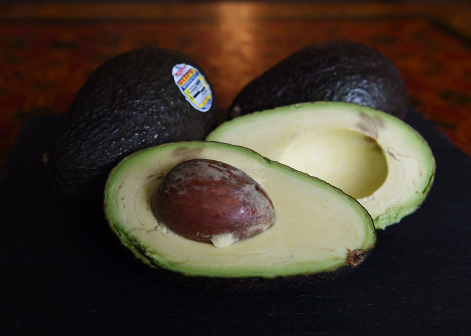 Trump Is (Inadvertently) Threatening to Create an Avocado Cartel