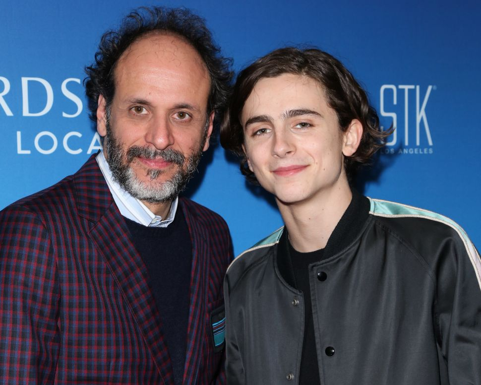 Exclusive: More Character Breakdowns for Luca Guadagnino's New HBO Series