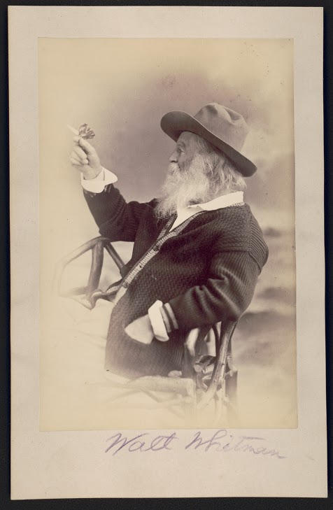 Reconsidering Walt Whitman: A Time-Honored American Tradition