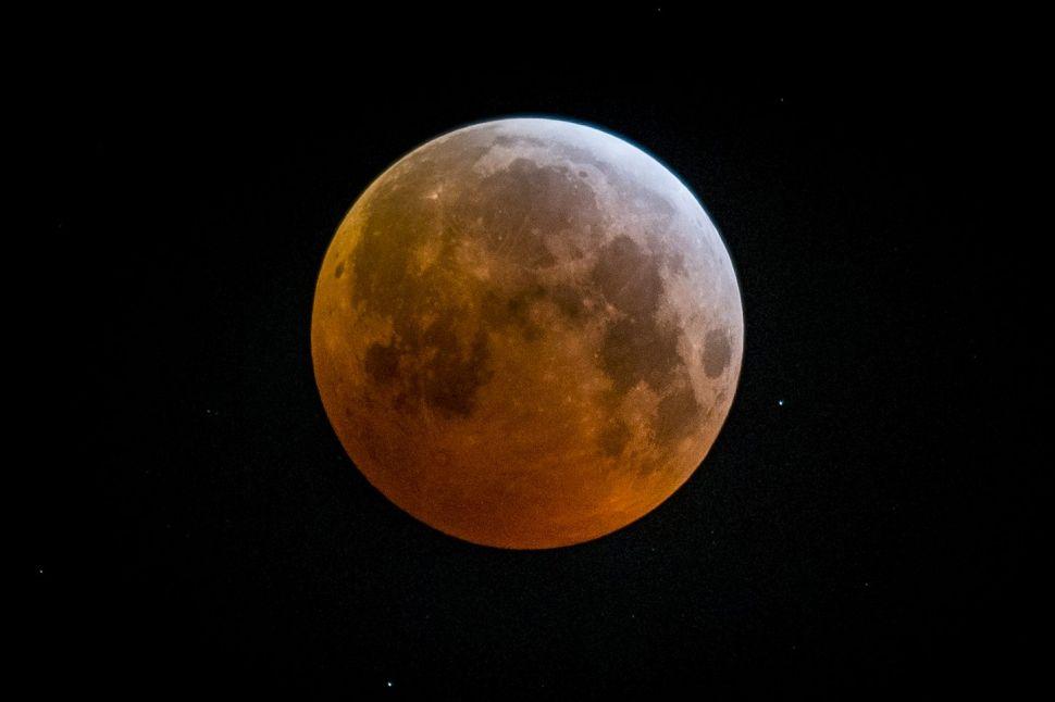 Elon Musk Mistook a 'Blood Moon' for Mars in New SpaceX Tweet