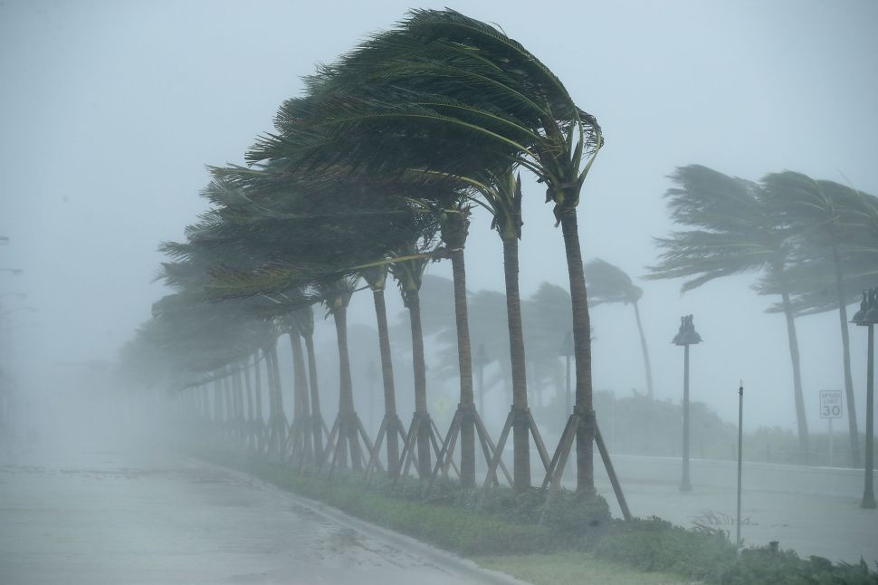 Are Hurricanes Blowing Climate Change Skepticism Away?