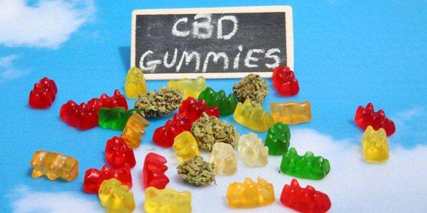 best-cbd-gummies.jpg?quality=80&crop=0px%2C108px%2C900px%2C450px&resize=876%2C438&strip