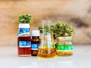 How do you choose the right CBD oil for pain relief?