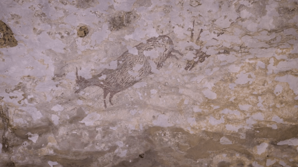 Earliest Known Figurative Cave Drawings Uncovered in Indonesia