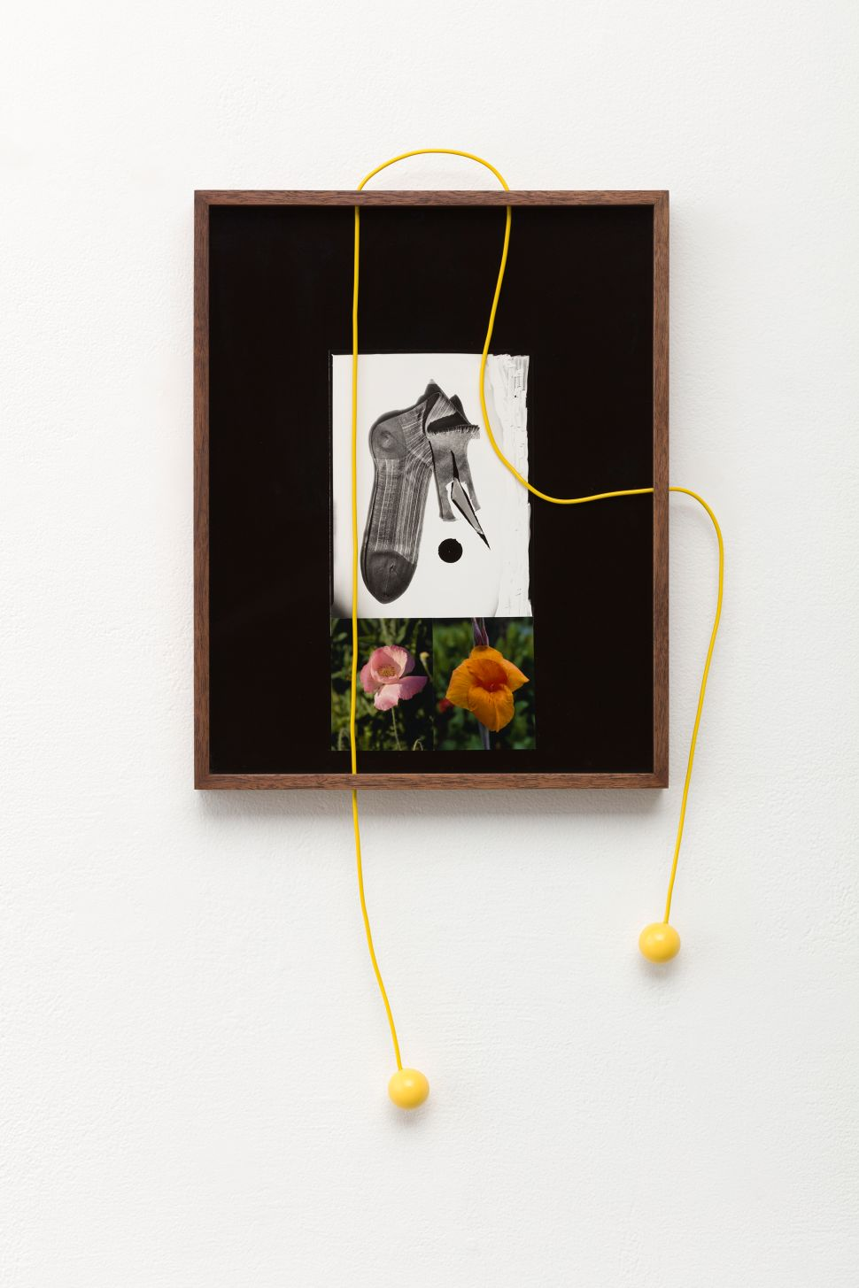 Artist Elad Lassry Will Make You Question the Definition of a Photograph