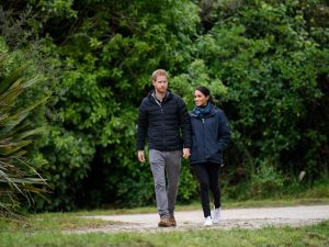 prince harry meghan markle canada lawsuit sussex