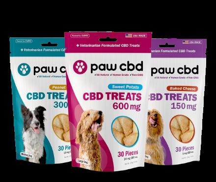 Best CBD Oil for Dogs — Buyer's Guide ...observer.com