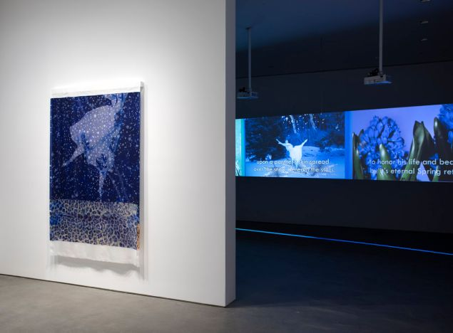 Installation view, T. J. Wilcox: Spectrum, at Gladstone Gallery, New York, 2020.