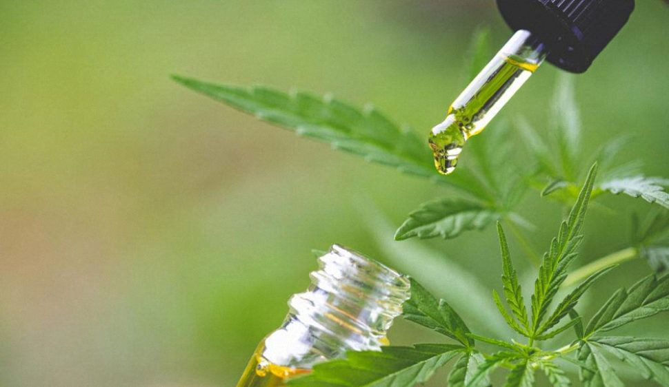 Best CBD Oil for Anxiety: Benefits and Top Brands for 2021