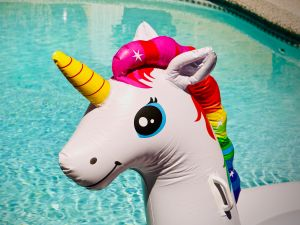 Tech unicorns were all the rage in the 2010s, but investors are now slowing their horses chasing them.