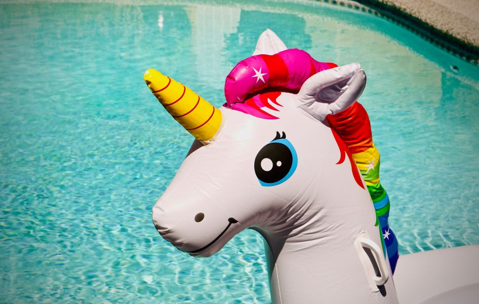 Will Tech Unicorns Finally Shed Their Sparkle in 2020? What Experts Think