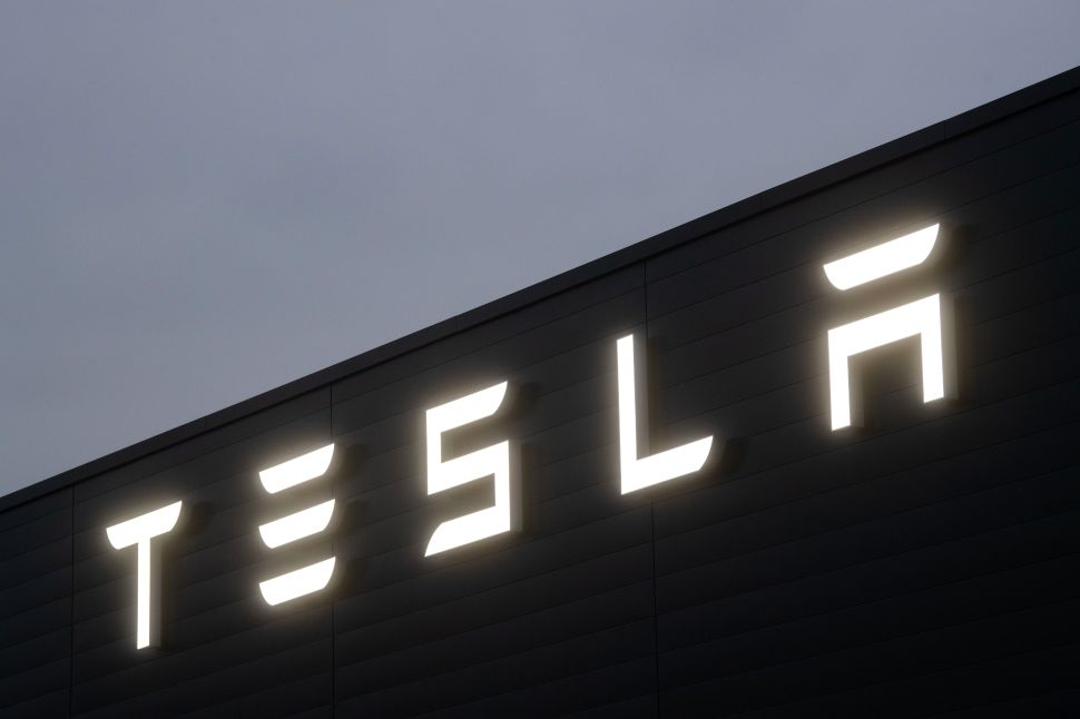 How Pro-Green Tesla Got Into a Fight With Environmentalists in Germany—and Won