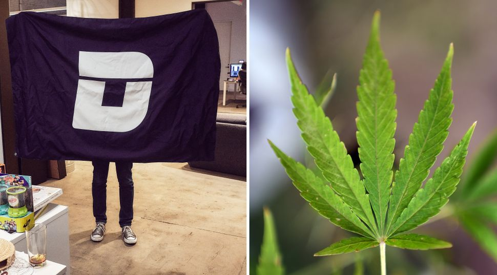 Deadspin's Tom Ley Talks Re-Packing the Blog for 4/20