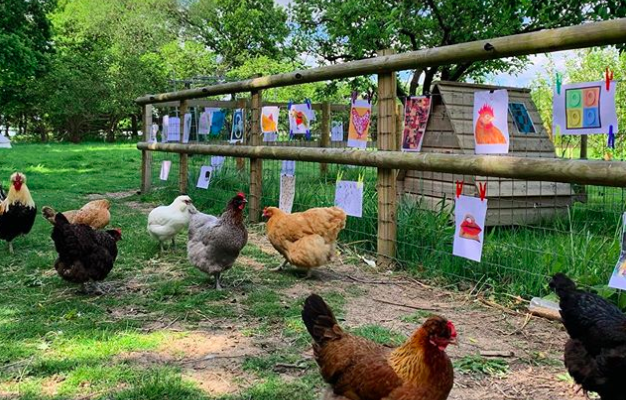 An Exhibition for Chickens Draws Unique Submissions From Well-Known Artists