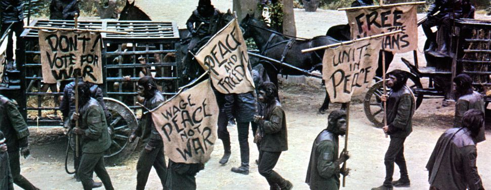 The apes protest in a scene from the film Beneath the Planet of The Apes