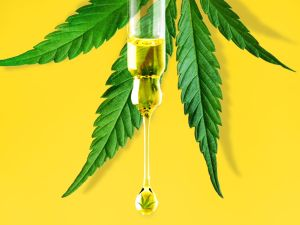 CBD-is-hitting-new-highs-in-the-wellness-world